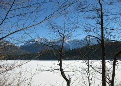 alpenblicke - Umgebung